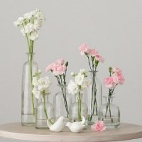 Set of 6 Clear Decorating Glass Bottles