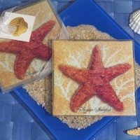 Starfish Glass Coaster Set