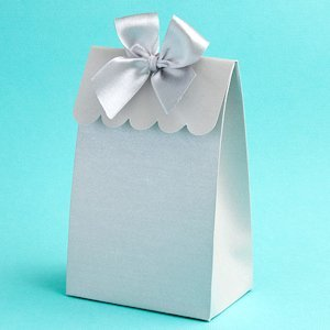 Perfectly Plain Collection Silver Gift Boxes image