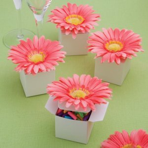 Perfectly Plain Collection Classy Pink Daisy Box Favors image