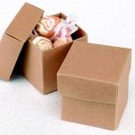 Mix and Match Two Piece Kraft Favor Boxes (Set of 25)