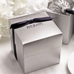 Silver Shimmer Wedding Favor Cake Boxes (Set of 25)