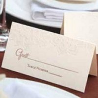 Lace Shimmers Place Card (Set of 25)