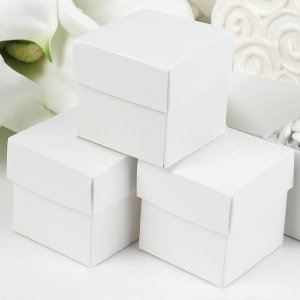 Mix and Match Two Piece White Favor Boxes (Set of 25) image