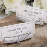 Birch Tree Branch Place Card Holder