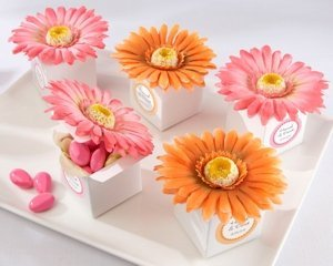 Gerbera Daisy Favor Boxes (2 Colors - Set of 24) image