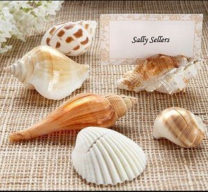 Real Seashell Place Card Holders (Set of 6) image