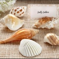 Real Seashell Place Card Holders (Set of 6)