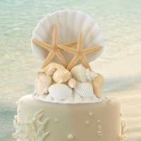 Coastal Sea Shell Cake Top