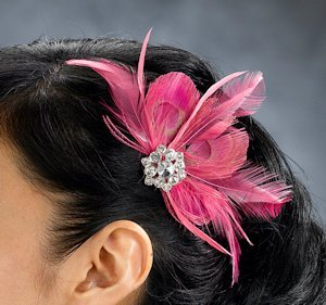 Hot Pink Feather Accessory Clip image