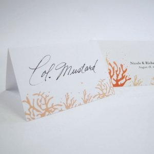 Coral Tented Place Cards (Set of 6 - 5 Colors) image