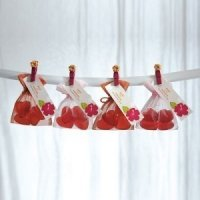 Small Rectangular Organza Bags (Set of 10)