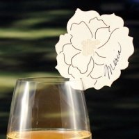 Laser Expressions Peony Die Cut Card - Set of 6 (6 Colors)