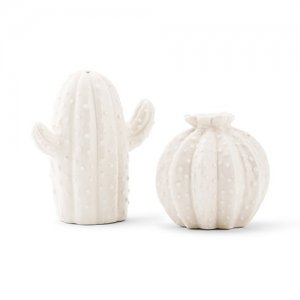 Novelty Cactus Salt & Pepper Shakers image