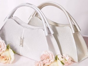 Vertical Band with Crystal Detail Evening Bag image
