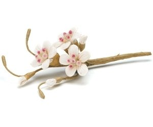 Sugared Cherry Blossom Floral Spray - Set of 12 image