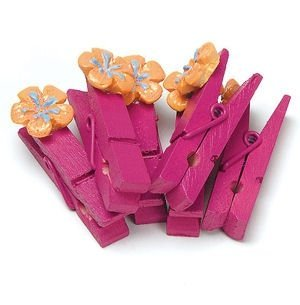 Mini Clothespins with Tropical Flair (12 pack). image