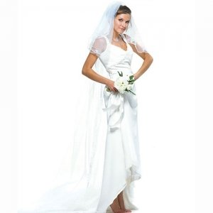 Embroidered Floor-Length Veil image