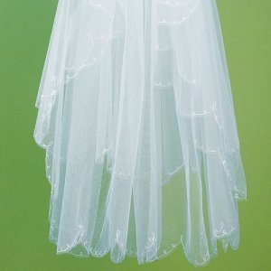 Embroidered Veil with Scalloped Edging image