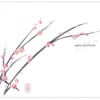 Custom Cherry Blossom Wedding Bulletin Paper