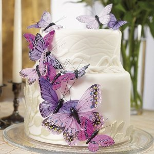 Beautiful Butterfly Cake Sets - 5 Colors image