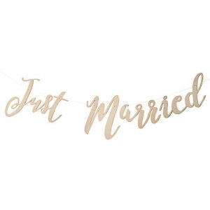 Just Married Wooden Wedding Banner image